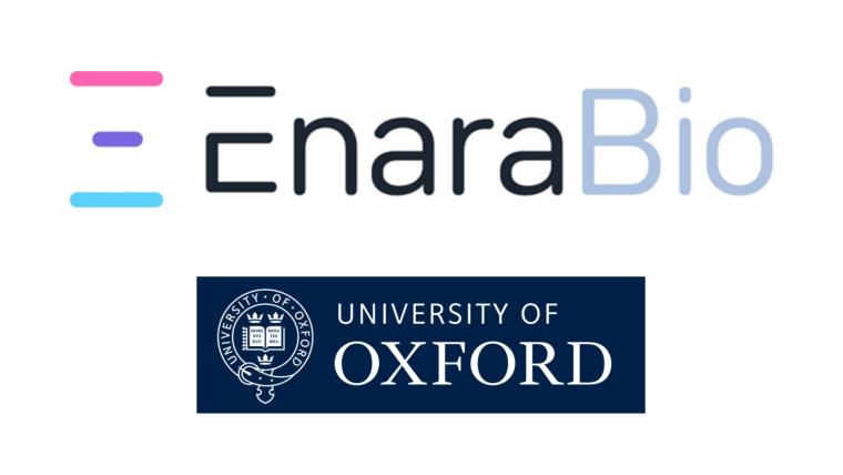 Logos for Enara Bio and University of Oxford