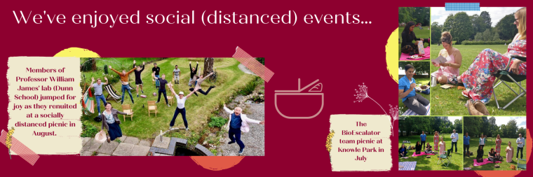 Teams enjoying socially distanced picnics during the summer