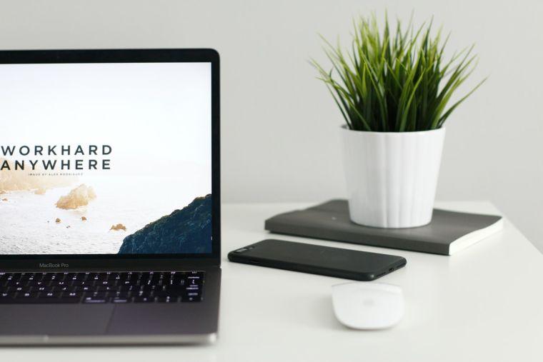 Laptop on a desk with a pot plant