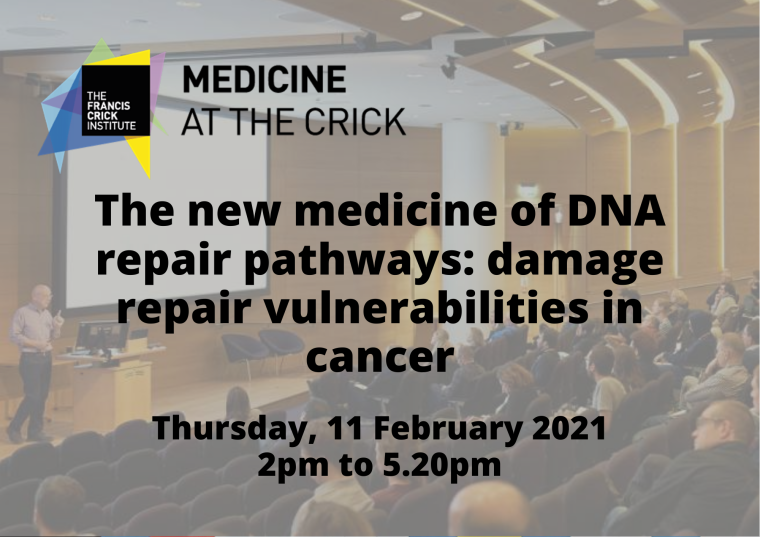 This image is advertising the sixth session of Medicine at the Crick titled, The new medicine of DNA repair pathways: damage repair vulnerabilities in cancer.