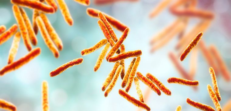Structural study of antibiotic opens the way for new tb treatments.jpg