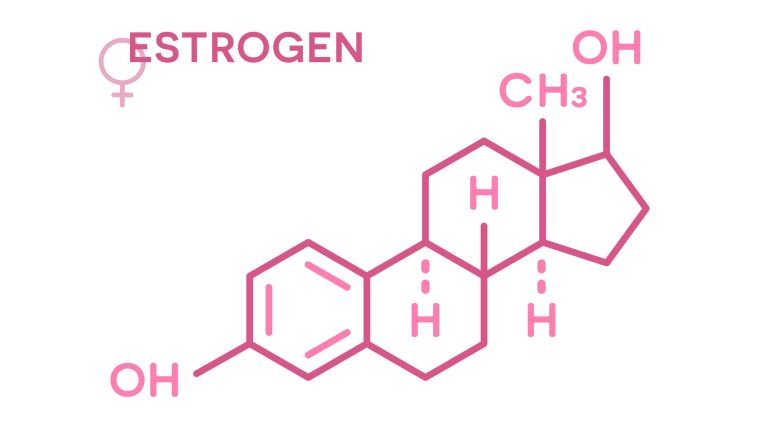 Chemical structure of the hormone oestrogen