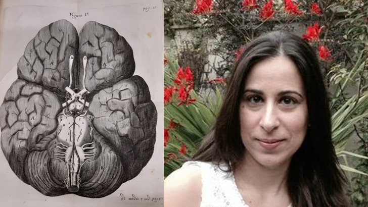 Cerebri Anatome illustration of the Circle of Willis (Christopher Wren), and an informal portrait taken outside of Chystalina Antoniades