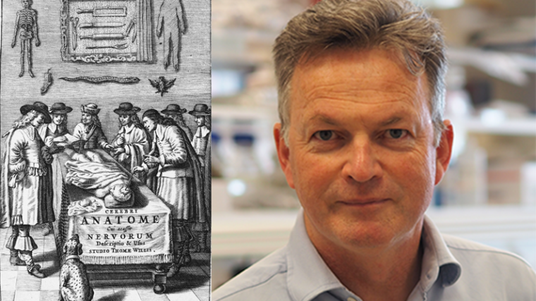 Title page of Cerebri Anatome shows Willis dissecting as part of a team (alongside other founding members of The Royal Society), and Professor Kevin Talbot headshot.