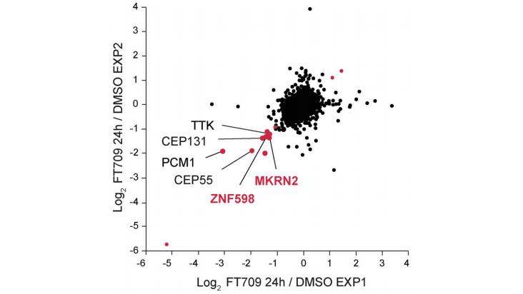 Correlation of two distinct experimental SILAC-based proteomic datasets