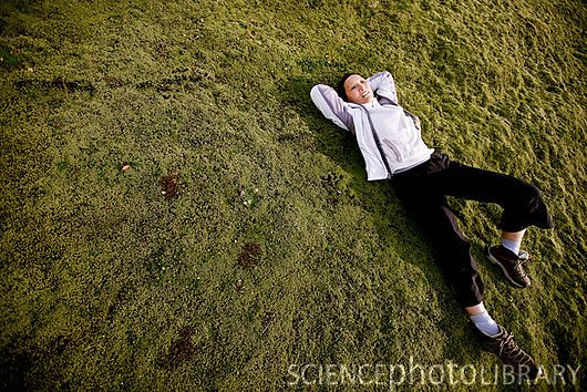 Woman relaxing on lawn (stock photo)
