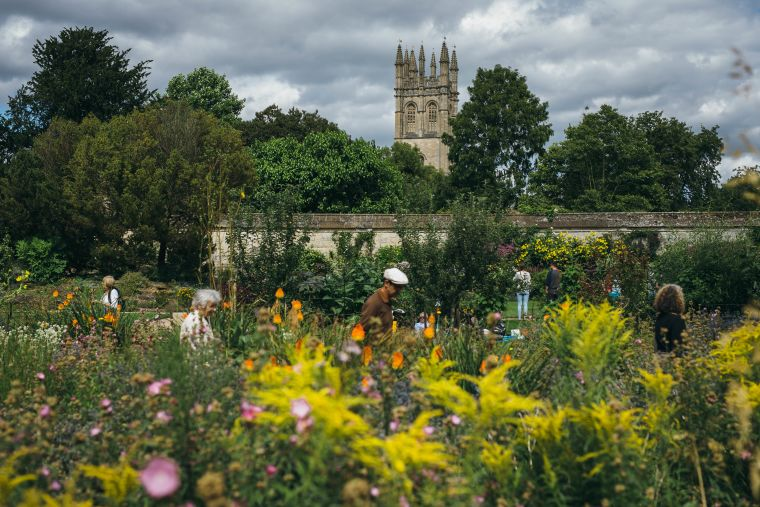 Botanical gardens in the summer
