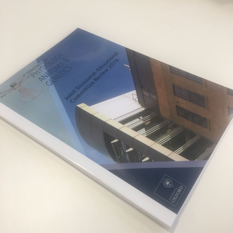Glossy departmentally branded committee review brochure