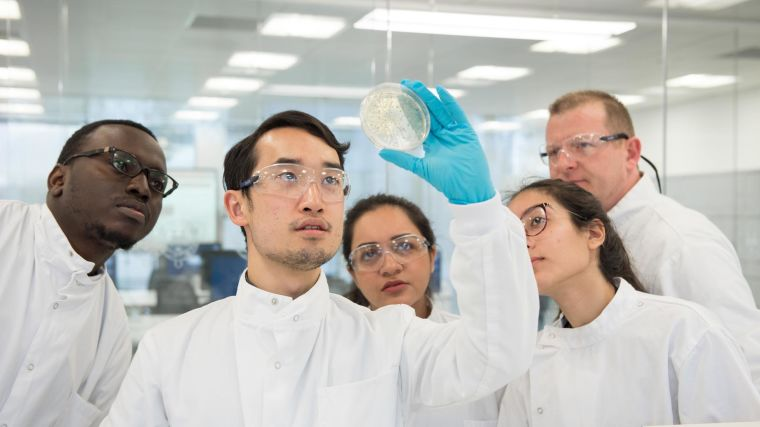 Five students are gathered together in lab coats looking at a petri dish.
