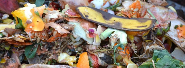 Picture of vegetable peelings and fruit peelings in a composter