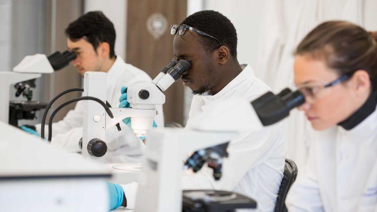 Students at microscopes