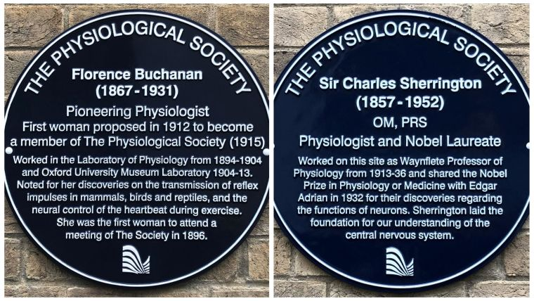 """Florence Buchanan's plaque refers to her as """"Pioneering Physiologist and First woman who proposed in 1912 to become a member of The Physiological Society (1915). Charles Sherrington's plaque refers to him as """"Physiologist and Nobel Laureate"""""""