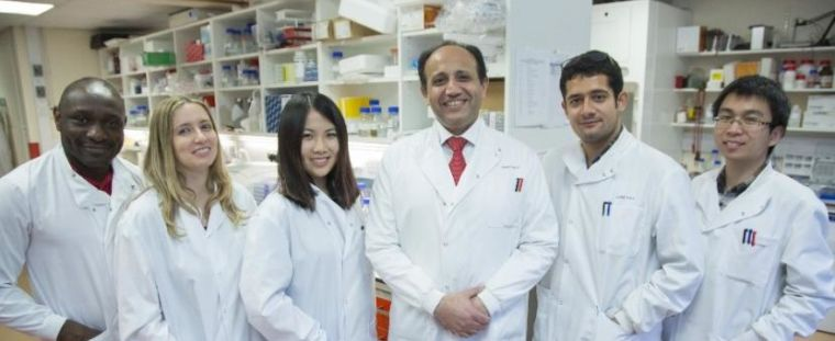 Professor Ahmed leads the Ovarian Cancer Cell Laboratory in The Weatherall Institute of Molecular Medicine. His research group uses cutting-edge innovative technologies to gain deeper understanding of mechanistic drivers of ovarian cancer initiation and progression.