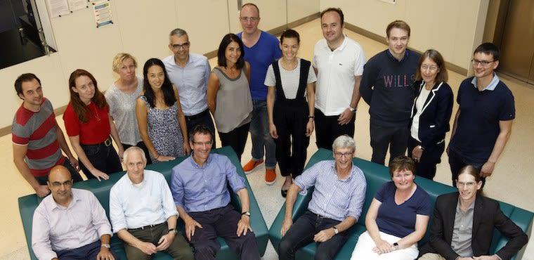 The IAMC team