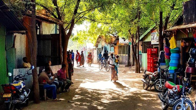 Quiet market stalls overhung with trees