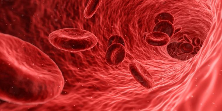 Computer generated image of red blood cells in a vein.