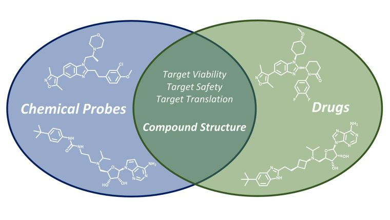 Graphical abstract: Chemogenomics for drug discovery: clinical molecules from open access chemical probes