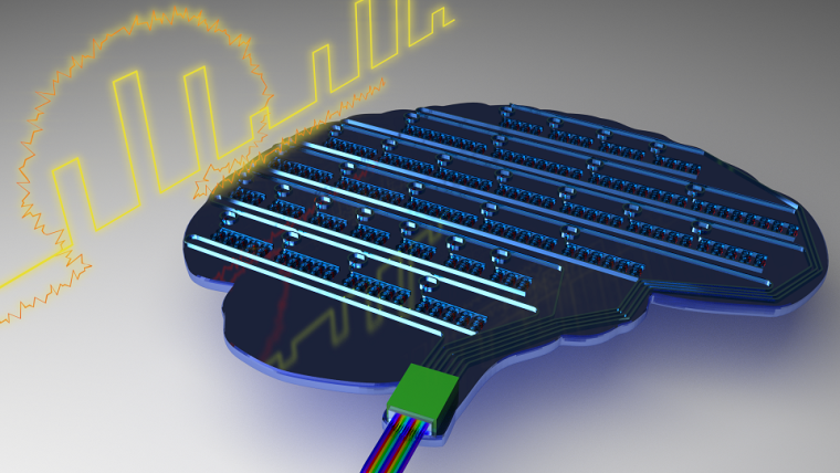 A computer memory chip in the shape of a human brain