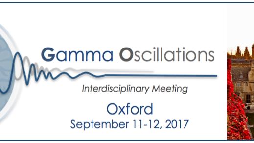 Gamma Oscillations logo