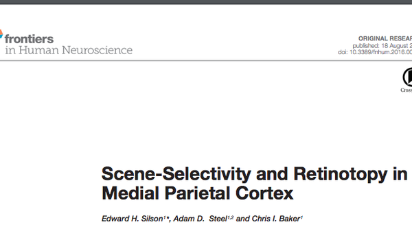 Published paper frontiers in human neuroscience