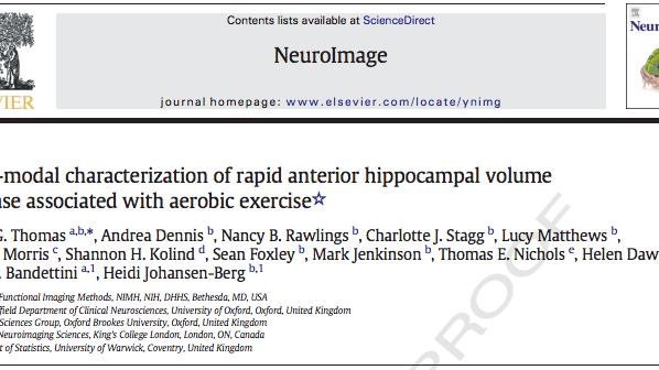Published Paper: NeuroImage