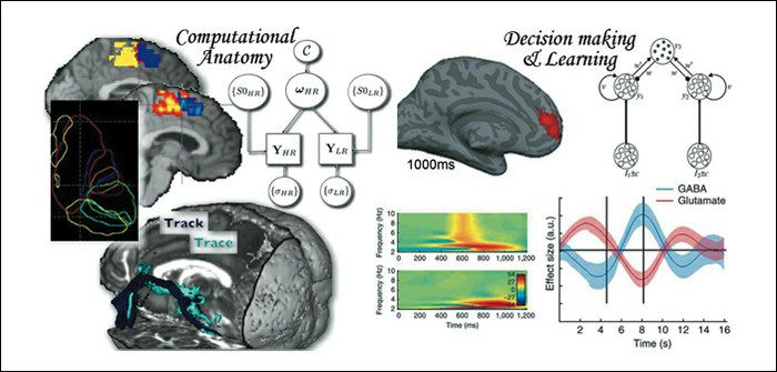 Figure illustrates findings from the computational anatomy and decision making and learning groups