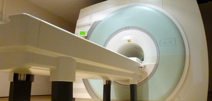 Ultra High-Field MRI