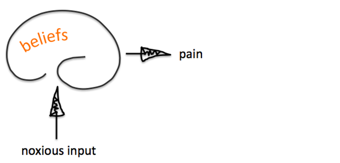 Flow chart of mind and pain