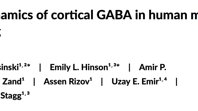 Published Paper: BioRXiv (preprint)