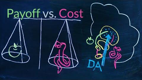 New combined model to understand payoffs and costs of actions
