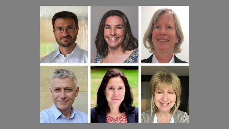 Six new professors