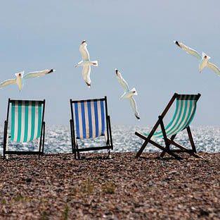 Deckchairs and seagulls on a beach