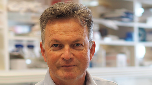 New head for nuffield department of clinical neurosciences professor kevin talbot