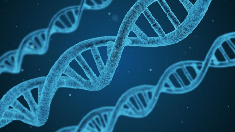 Our genes may determine whether some people experience multiple chronic diseases, according to research published in PLOS One.