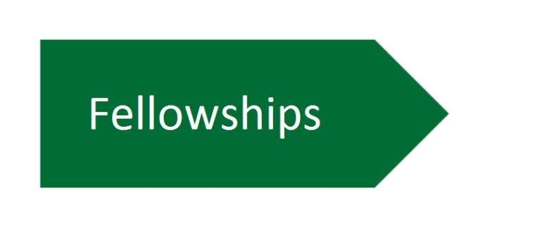 Information regarding studentships coming shortly