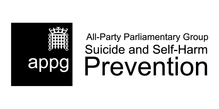 Presenting evidence to the all party parliamentary group on suicide and self harm prevention