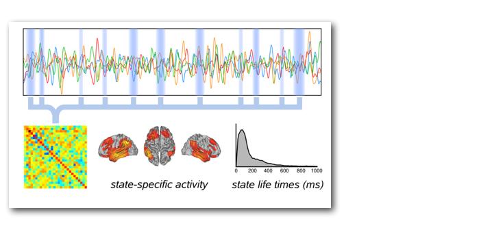 Fast transient networks figure