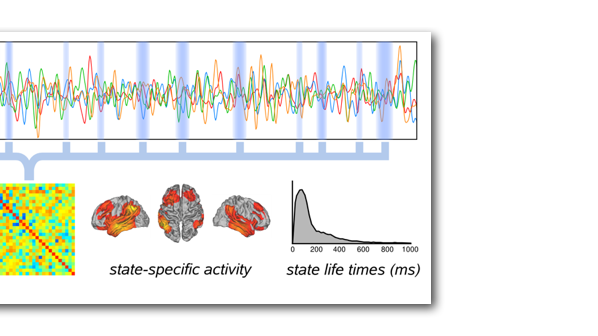 Dynamic functional connectivity and fast transient networks
