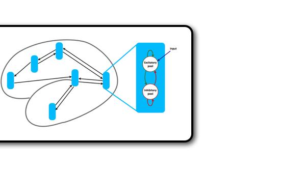 Large scale biophysical network models