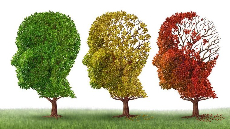 3 dimensional landscape of european data availability for alzheimer2019s disease research launched