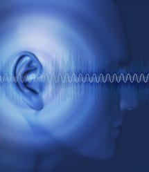 Neural substrates of hearing loss and tinnitus