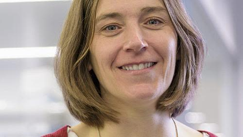 Sarah de val to expand critical research into endothelial cell dysfunction in cardiovascular disease