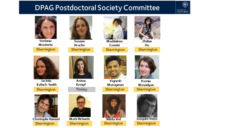 Postdoc committee 2019 x3.png