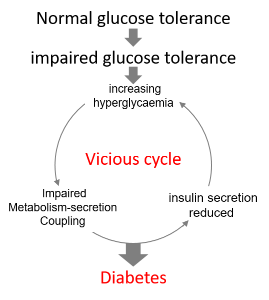 Lizzie metabolism paper hypothesis