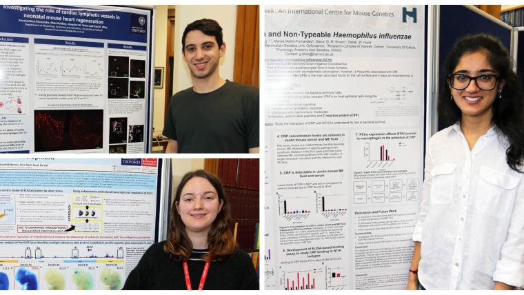Winners of the dpag student poster day 2019 announced