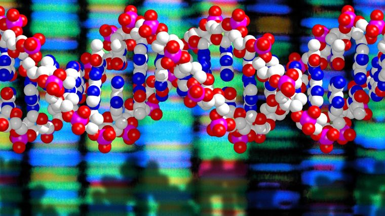 Massive sequencing study links rare dna alterations to type 2 diabetes