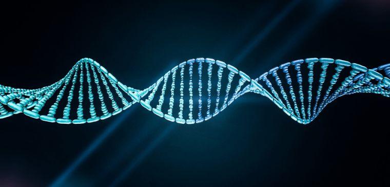 DNA double helix.