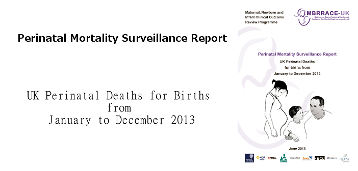 Latest perinatal mortality surveillance report now available