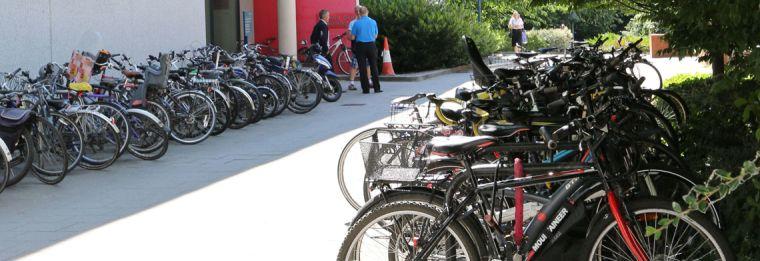 Rdb_bikes_banner.jpg