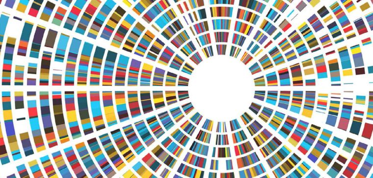 Genomics report image_image provided by sheena cameron